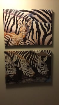 Wall Decor - Zebra pictures London, N6A