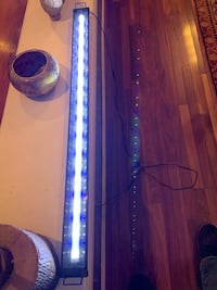 Lighting for 55 gallon fish tank Silver Spring, 20902