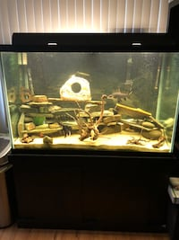150 gallon fish tank with a lot of extras