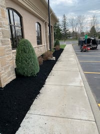 Landscaping Clarence Center, 14032