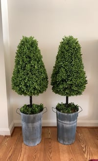 Plant-artificial topiaries