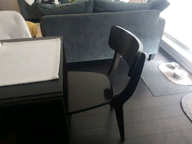 2 black dining room chairs 3