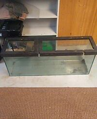black framed pet tank Bowmanville, L1C 4V2