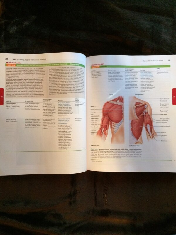 Used Pearson Human Anatomy And Physiology For Sale In Spring Hill