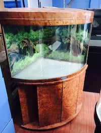 brown framed clear glass pet tank Longueuil, J4H 1H9