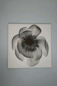white and black flower painting St. Catharines, L2R 2B1