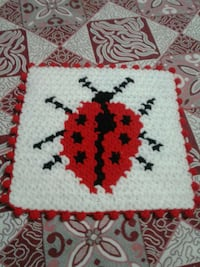 Coccinellidae örme placemat