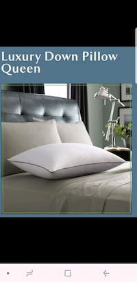 Two Brand New Queen Luxury Down Pillows  Antelope, 95843
