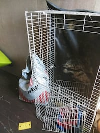 Gunia pig or rabbit cage with hide out  and treats