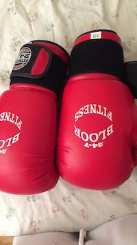 pair of red-and-black Everlast boxing gloves Toronto