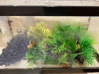 Fish Tank with pebbles & Grass Mississauga, L4X 1R8
