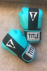TITLE boxing gloves Leesburg, 20175