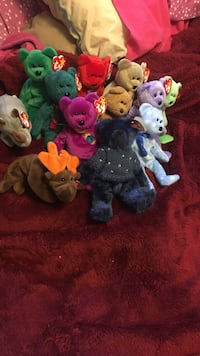 Variety of assorted ty beanie baby plush toys Flagstaff, 86005