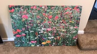 """Large ikea canvas picture, 46""""x31"""" Shelby Township, 48317"""