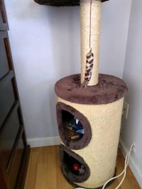 brown and white cat tree San Diego, 92115