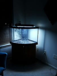 bow front black framed clear glass tank Severn, 21144