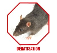 Low price Mouse Rat extermination bedbugs cockroache Montreal