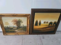 Two wall paintings mint condition Toronto, M9W 1E1