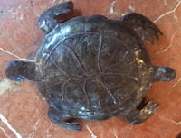 """Metal turtle 14""""by 10"""" Vancouver, V6H 1S7"""
