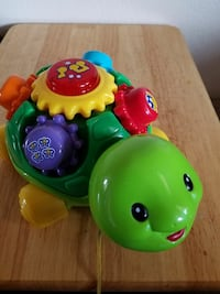 Musical turtle Chandler, 85224