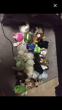 Webkinz!!! All for $50 but we can talk about separate prices let me know Calgary, T3J 4E5