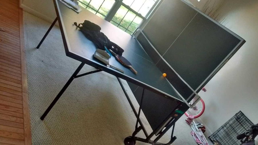 Ping Pong Table (prince Ctt) In Germantown   Letgo