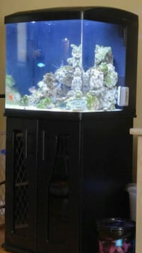 Saltwater Tank Setups and Teaching Elizabethtown, 17022