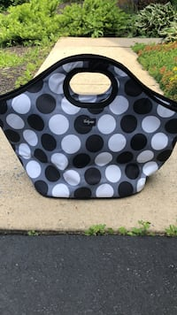 Thirty-one cooler bag Middletown, 21769