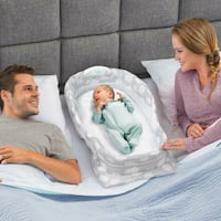Baby Delight Snuggle Nest (w light & sound!) Vienna, 22180