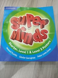 Super Minds Posters Level 1 & 2