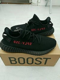 SIZE 11 BRED New York, 10034