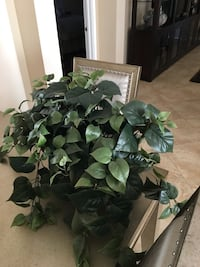 artificial green leaf plant