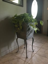 Plant Stand Stow, 44224