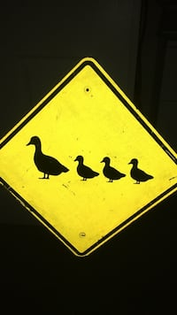 One yellow and black bird and bird sign Oro Valley, 85737