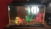 10 Gallon Working Fish Tank Johnstown, 80534