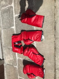Everlast boxing gloves and headgear Toronto, M9A 1K7