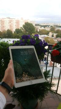 Ipad air2 64gb golden Красногорск, 143401
