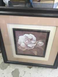white petaled flower painting with black wooden frame Knoxville, 37918