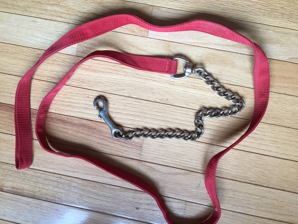 Horse lead rope with chain