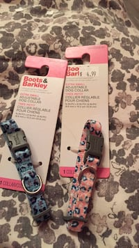 Small pet collars 5$ for both  Toronto, M1G 1J3