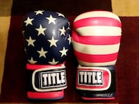 Adult USA Title boxing gloves  Clive, 50325