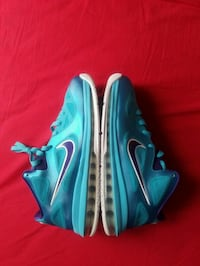LeBron 9 low(Charlotte)pre-owned sz10.