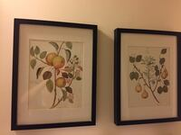 two black wooden framed painting of flowers Arlington, 22204