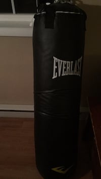 Everlast  100lb bag Perryville, 21903