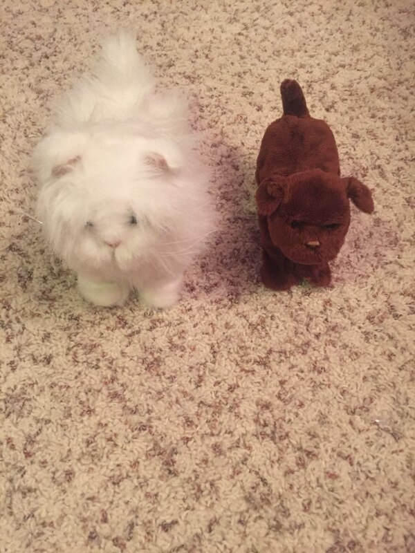 Used Fur real pets for sale in Shorewood - letgo