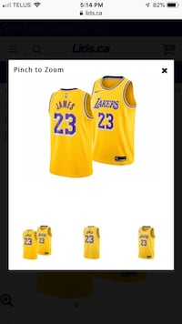 LeBron James Lakers jersey Kamloops, V0E 2A0
