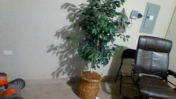 artificial plant 5,10 tall