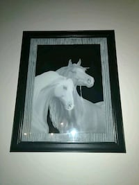 Very unique nice mystical horse wall art picture  Warrenton, 63383