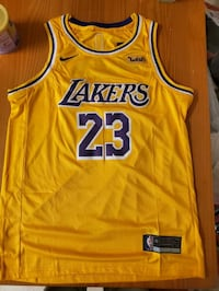 New Lebron James Lakers Jersey