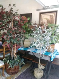 Artificial trees, lot of five for$100 prices vary individually